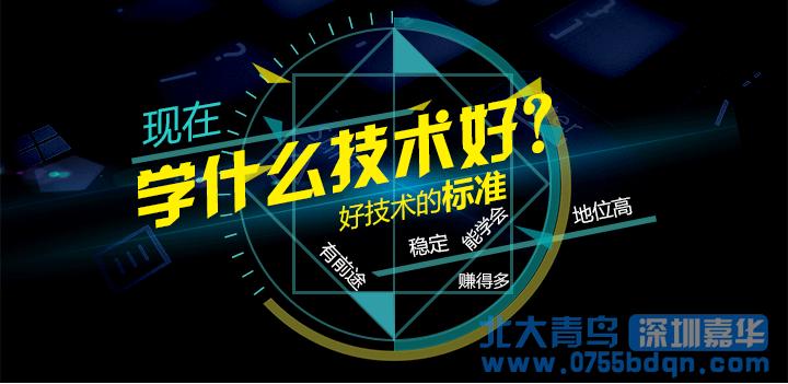 东门北大青鸟:大专技校有哪些?